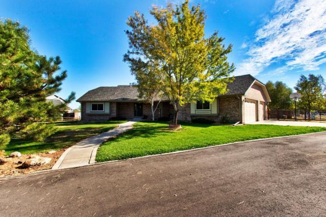 13809 E 133rd Drive, Brighton, CO 80601 (MLS #8634033) :: 8z Real Estate