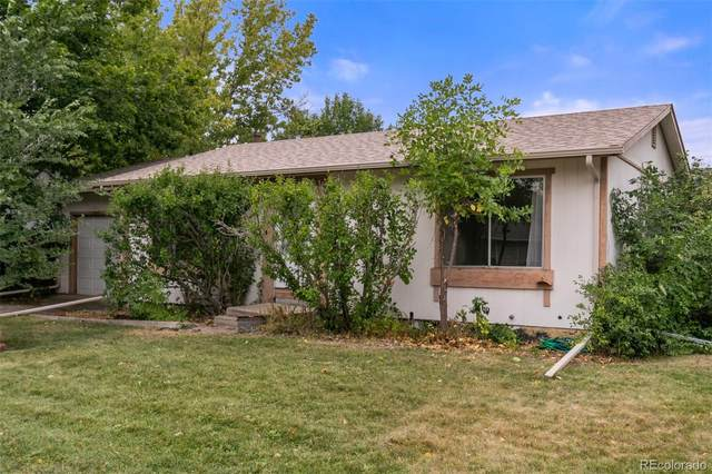 6759 Ingalls Street, Arvada, CO 80003 (#8637119) :: Re/Max Structure