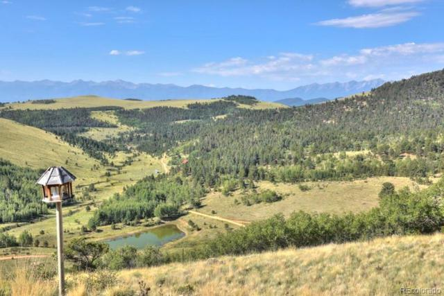2423 Anteolpe Trail, Cotopaxi, CO 81223 (MLS #8638253) :: 8z Real Estate