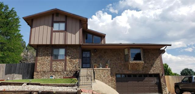 5 Ironweed Drive, Pueblo, CO 81001 (#8638495) :: The Heyl Group at Keller Williams