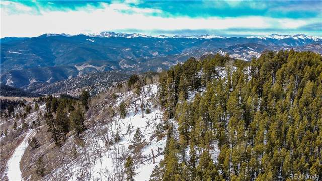 1799 Robinson Hill Road, Black Hawk, CO 80422 (#8638837) :: Chateaux Realty Group