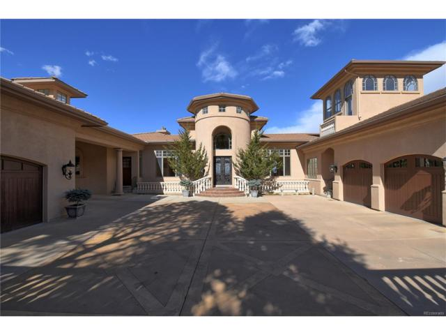 940 Grey Mountain Point, Colorado Springs, CO 80906 (#8639825) :: 5281 Exclusive Homes Realty
