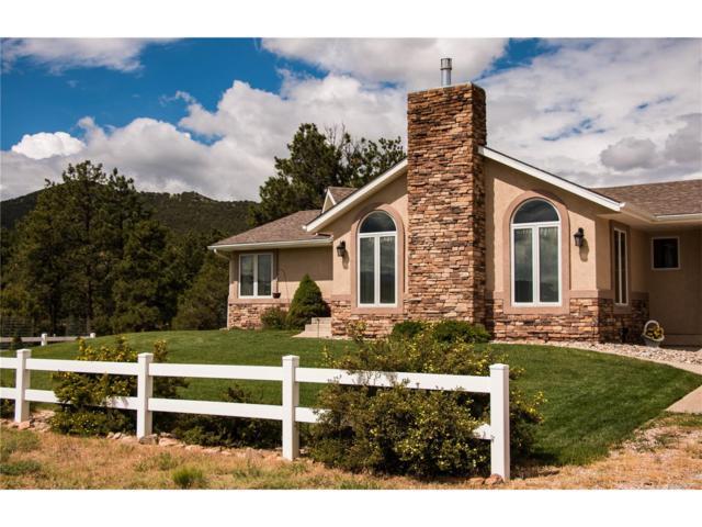 210 Maricopa Court, Westcliffe, CO 81252 (MLS #8641090) :: 8z Real Estate