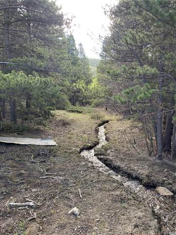 Lot 648 Alice Road, Idaho Springs, CO 80452 (#8643582) :: Wisdom Real Estate