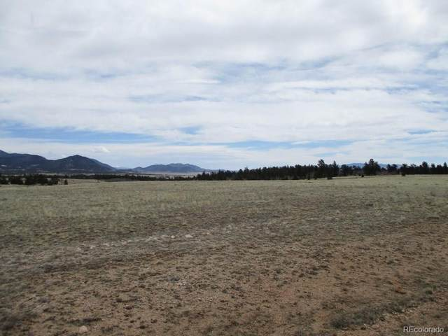 Ako Trail, Hartsel, CO 80449 (#8655518) :: James Crocker Team