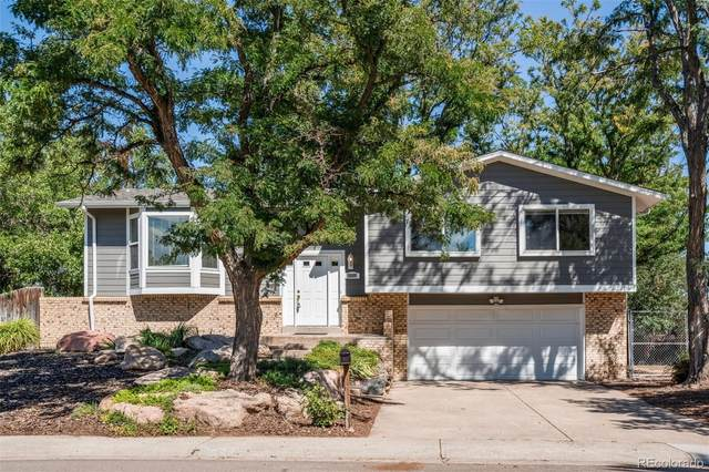 7624 S Harlan Street, Littleton, CO 80128 (#8659198) :: My Home Team