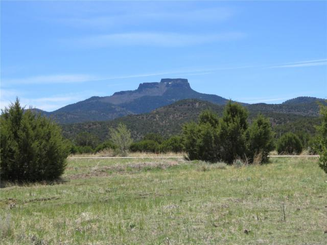 Moores Canyon Road, Trinidad, CO 81082 (#8659329) :: Structure CO Group