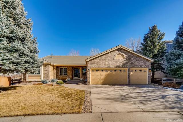 10442 Grizzly Gulch, Highlands Ranch, CO 80129 (#8661628) :: The Harling Team @ HomeSmart