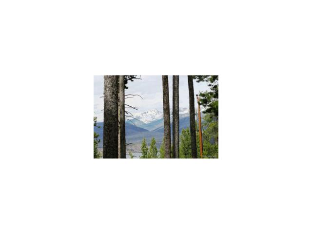 212 Arapaho Drive, Grand Lake, CO 80447 (MLS #8662642) :: 8z Real Estate
