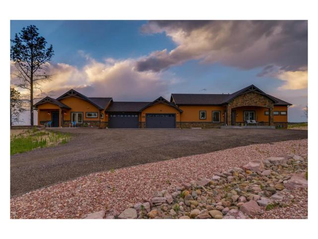 6610 Trappers Pass Trail, Colorado Springs, CO 80908 (MLS #8663995) :: 8z Real Estate