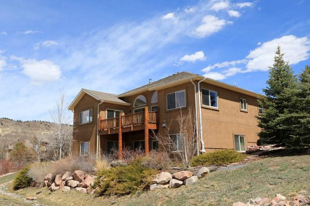 20281 High Pines Drive, Monument, CO 80132 (#8667148) :: The HomeSmiths Team - Keller Williams