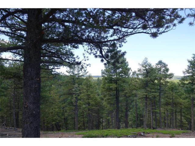4054 Forest Lane, Larkspur, CO 80118 (MLS #8674715) :: 8z Real Estate