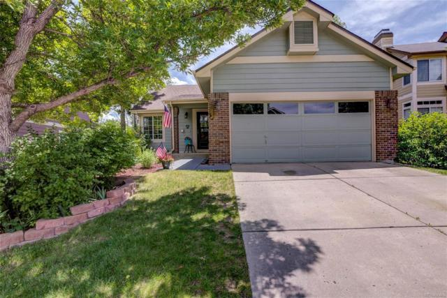 17112 Campion Way, Parker, CO 80134 (#8679123) :: Sellstate Realty Pros