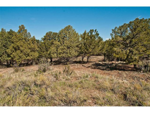 144 Moonlight Way, Crestone, CO 81131 (MLS #8680917) :: 8z Real Estate
