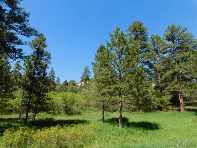 4815 Mohawk Drive, Larkspur, CO 80118 (MLS #8683279) :: Find Colorado