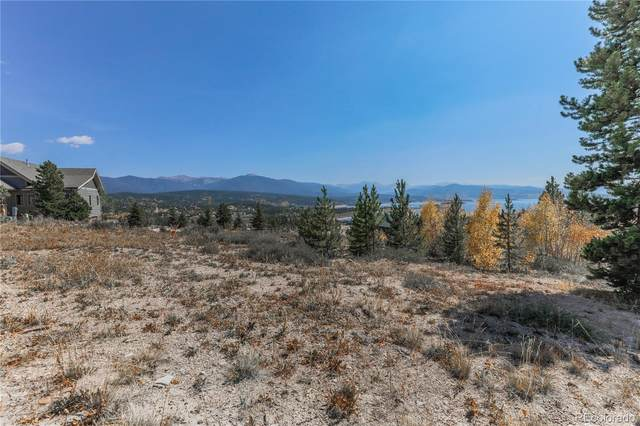 55 Native Lane, Granby, CO 80446 (#8684635) :: Own-Sweethome Team