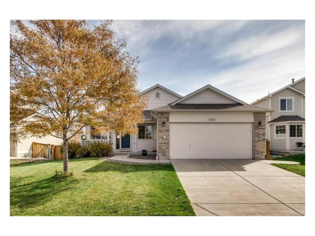 12636 Prince Creek Drive, Parker, CO 80134 (#8684932) :: Structure CO Group