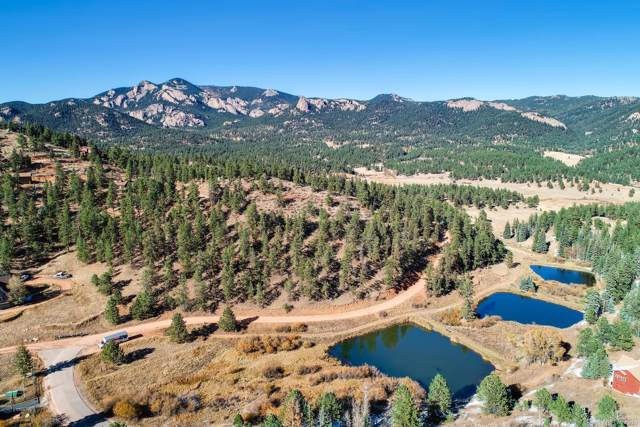0 Lake View Drive, Pine, CO 80470 (#8688600) :: The DeGrood Team