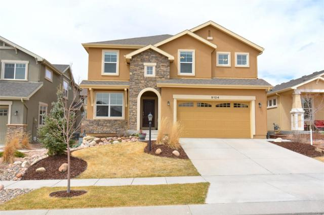 9124 Lizard Rock Trail, Colorado Springs, CO 80924 (#8689675) :: The Pete Cook Home Group