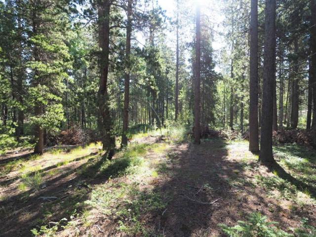 0 Severance Road, Black Hawk, CO 80422 (#8691649) :: The Peak Properties Group