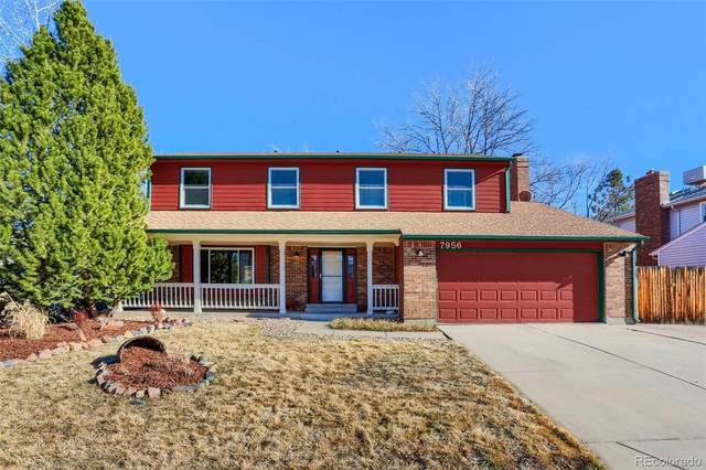 7956 S Logan Drive, Littleton, CO 80122 (#8693899) :: The Gilbert Group