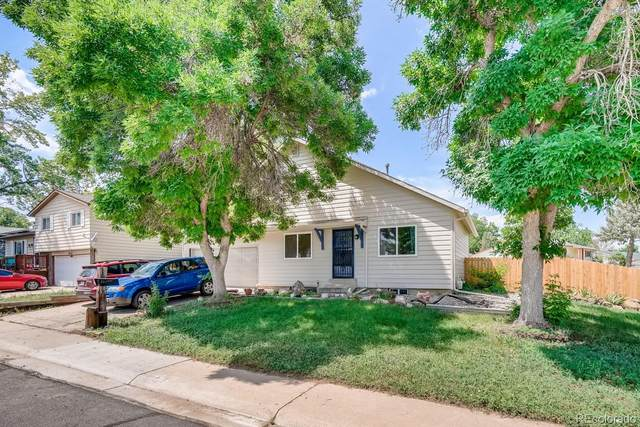 6111 W 108th Place, Westminster, CO 80020 (#8695339) :: The DeGrood Team