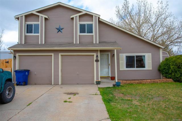 910 Rancher Drive, Fountain, CO 80817 (#8695569) :: House Hunters Colorado