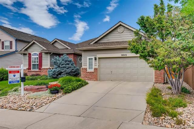 8642 Mallard Place, Highlands Ranch, CO 80126 (#8697310) :: The DeGrood Team