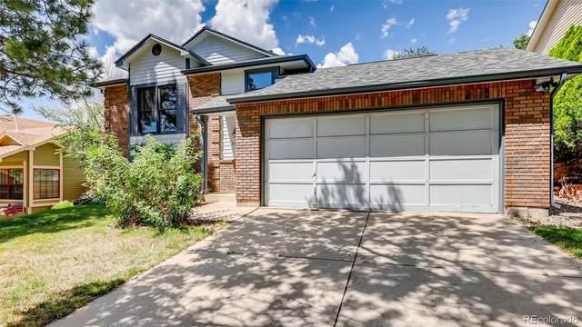 3550 Whimbrel Lane, Colorado Springs, CO 80906 (MLS #8698448) :: 8z Real Estate