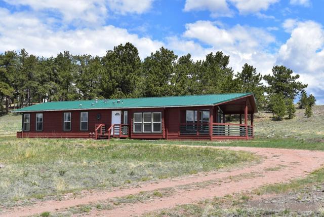 263 Meadow Lane, Guffey, CO 80820 (MLS #8705392) :: 8z Real Estate