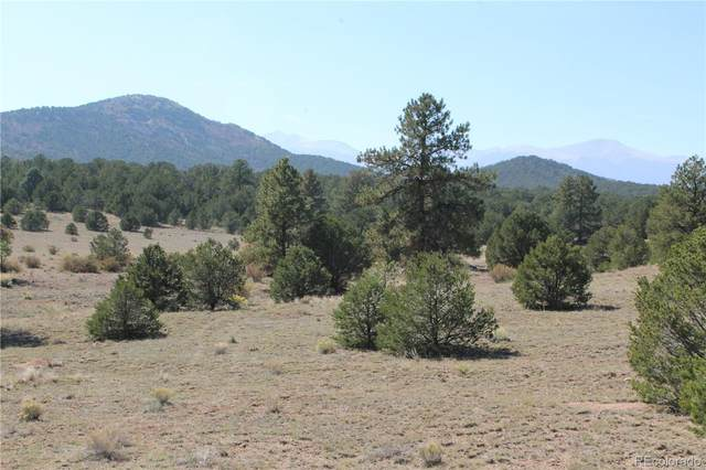 Lot 15 Hitching Post Road, Cotopaxi, CO 81223 (#8707224) :: Portenga Properties - LIV Sotheby's International Realty