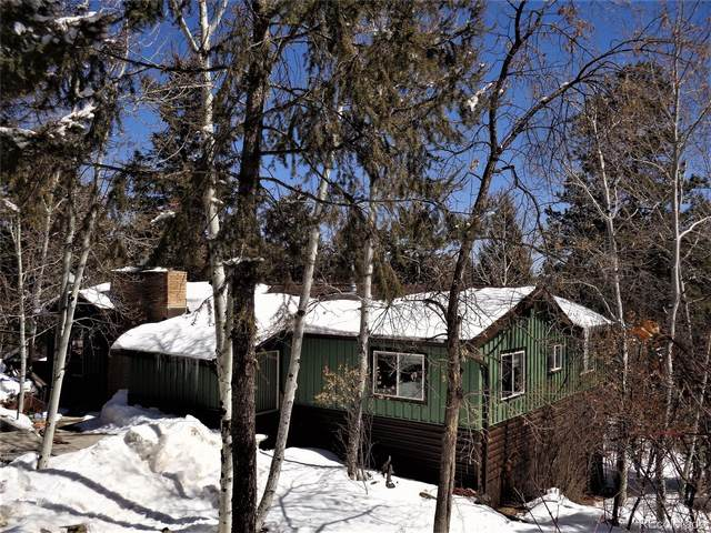 11728 Apache Trail, Conifer, CO 80433 (#8707838) :: The Harling Team @ HomeSmart