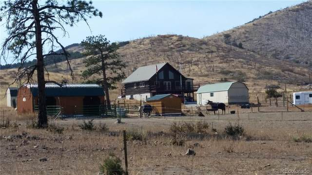 2849 County Road 27A, Cotopaxi, CO 81223 (MLS #8708032) :: 8z Real Estate