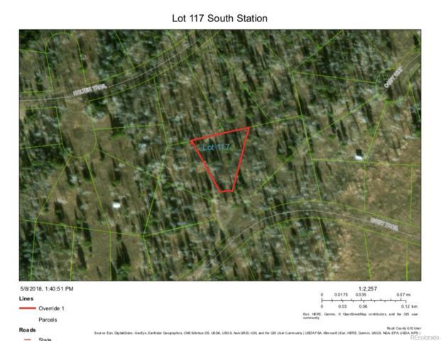 Lot 117 Cody Trail, Oak Creek, CO 80467 (#8709054) :: The Healey Group