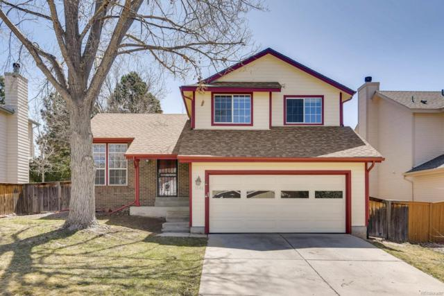 1046 Brittany Way, Highlands Ranch, CO 80126 (#8711166) :: The Peak Properties Group