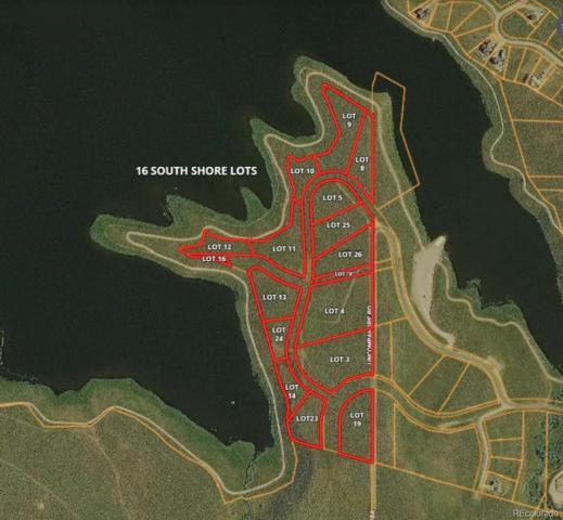 Exhibit A South Shore, Oak Creek, CO 80467 (MLS #8711817) :: 8z Real Estate