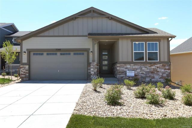 7306 S Titus Way, Aurora, CO 80016 (#8711906) :: The Tamborra Team