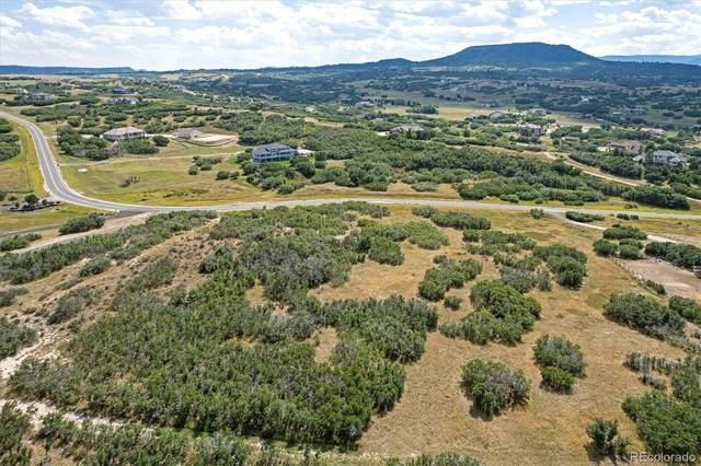 3100 Castle Butte Drive, Castle Rock, CO 80109 (MLS #8714013) :: Find Colorado