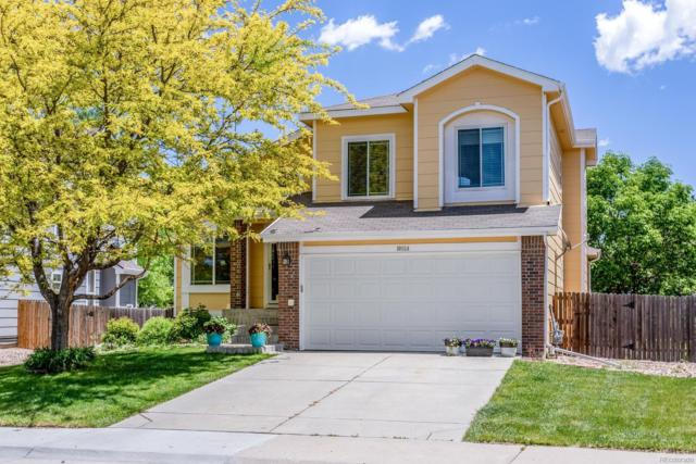 10854 Bullock Court, Parker, CO 80134 (#8715297) :: Bring Home Denver with Keller Williams Downtown Realty LLC
