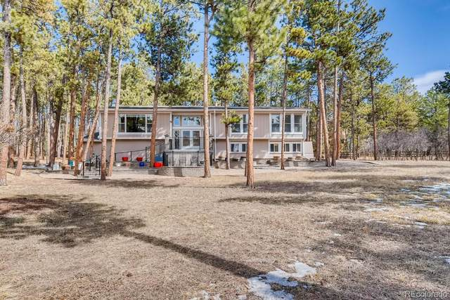 19337 Knotty Pine Way, Monument, CO 80132 (#8716871) :: Hudson Stonegate Team