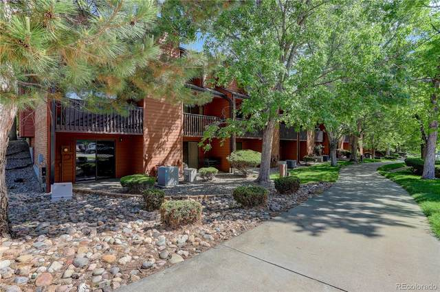 449 Wright Street #1, Lakewood, CO 80228 (#8716900) :: The DeGrood Team