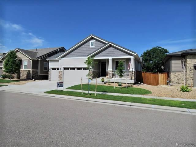 11453 Hannibal Street, Commerce City, CO 80022 (#8717100) :: Wisdom Real Estate