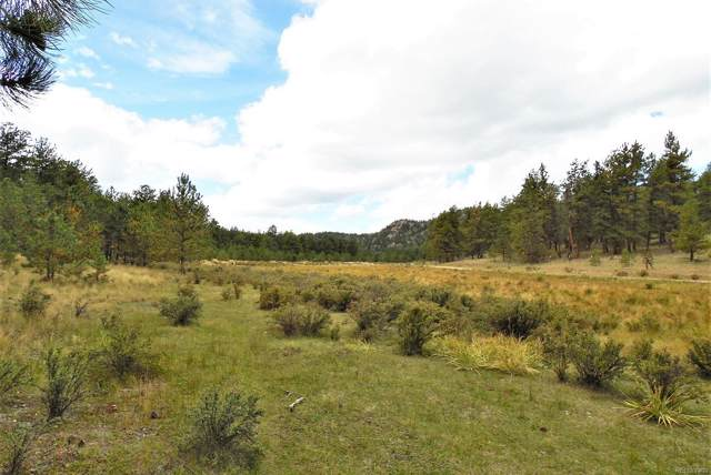 Tract 35 Doe Valley Road, Guffey, CO 80820 (#8720176) :: The DeGrood Team