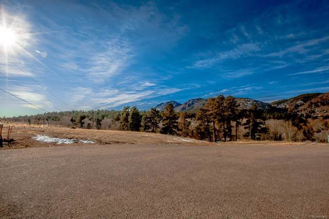 Brook Street, Palmer Lake, CO 80133 (#8720317) :: Harling Real Estate