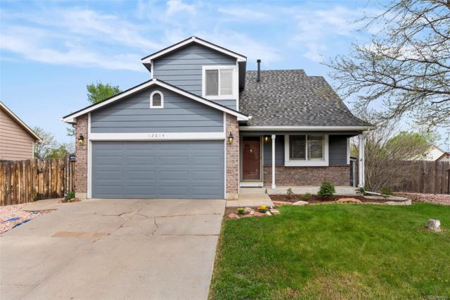 12014 Glencoe Street, Thornton, CO 80241 (MLS #8721197) :: 8z Real Estate