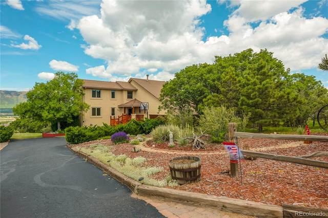 680 Harness Road, Monument, CO 80132 (#8722376) :: Wisdom Real Estate