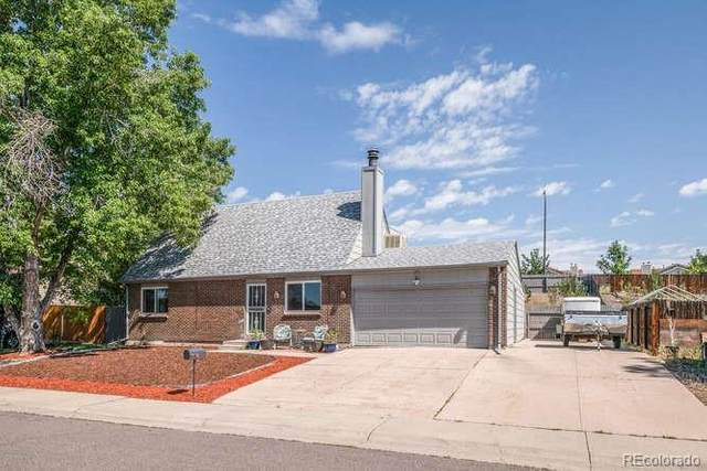 5689 W 79th Place, Arvada, CO 80003 (MLS #8726041) :: 8z Real Estate