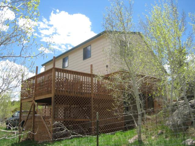 491 Miners Way, Bailey, CO 80421 (#8728696) :: The DeGrood Team