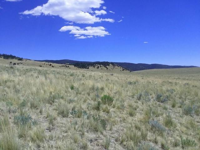Horn Road, Westcliffe, CO 81252 (#8729107) :: Bring Home Denver