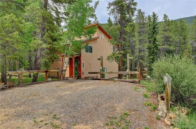 145 Elk Way, Idaho Springs, CO 80452 (MLS #8730927) :: Bliss Realty Group